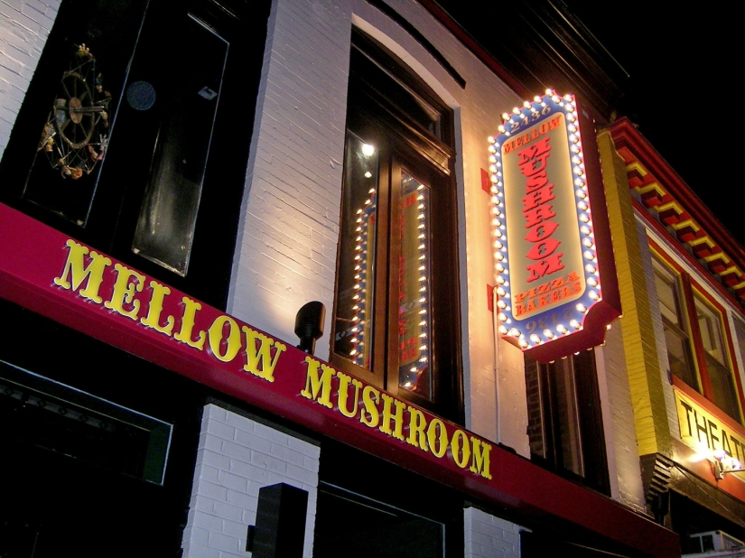 FLOC volunteers and staff enjoyed pizza and drinks at Mellow Mushroom last week.